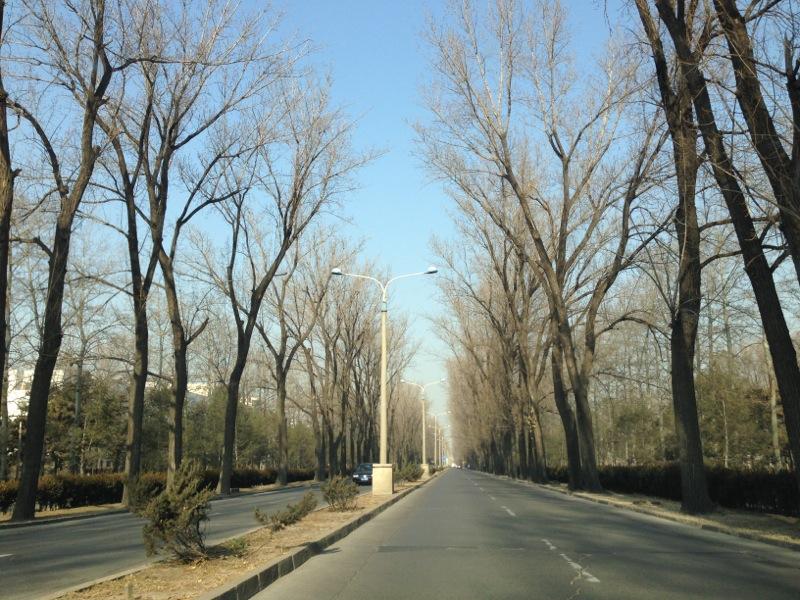 Blue Skies Beijing